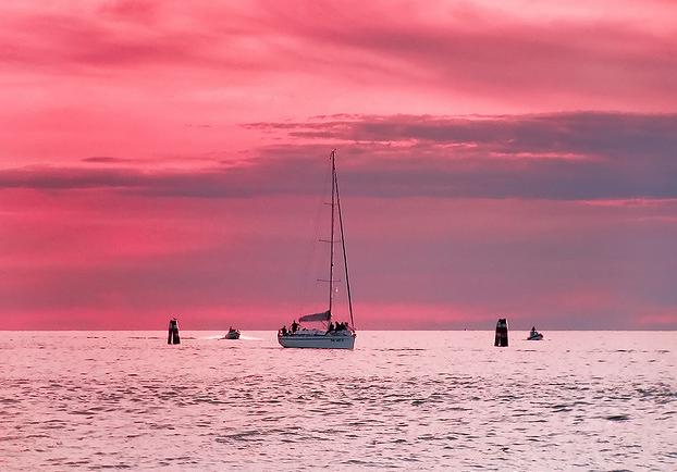 лодка розовый цветок